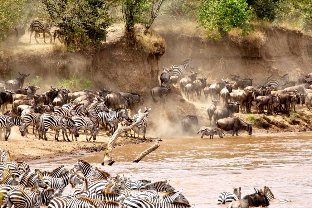 Sand River Mara Crossing