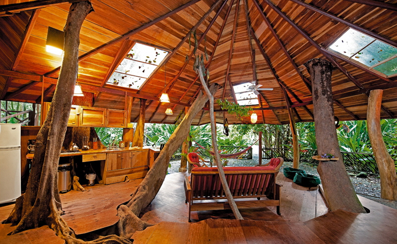 Treehouse Lodge Costa Rica