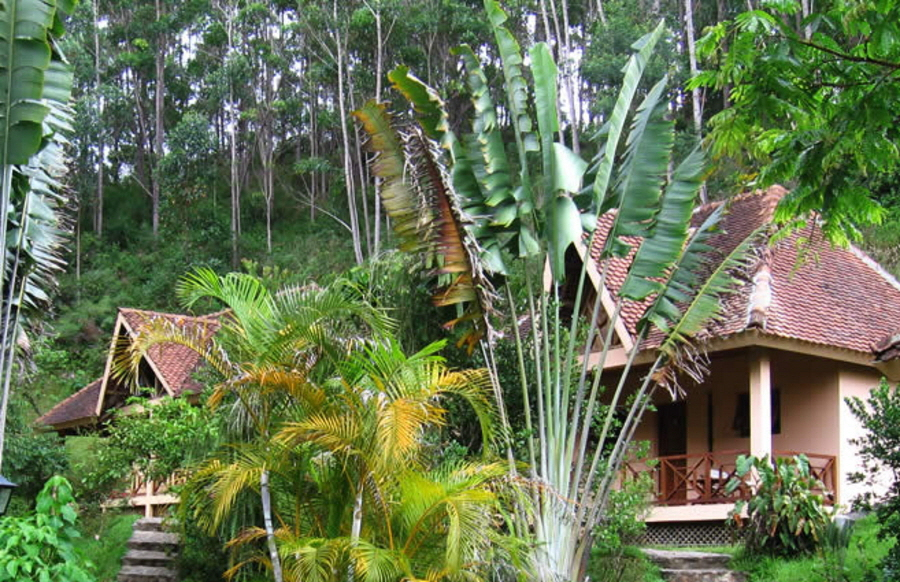 Vakoma Forest Lodge